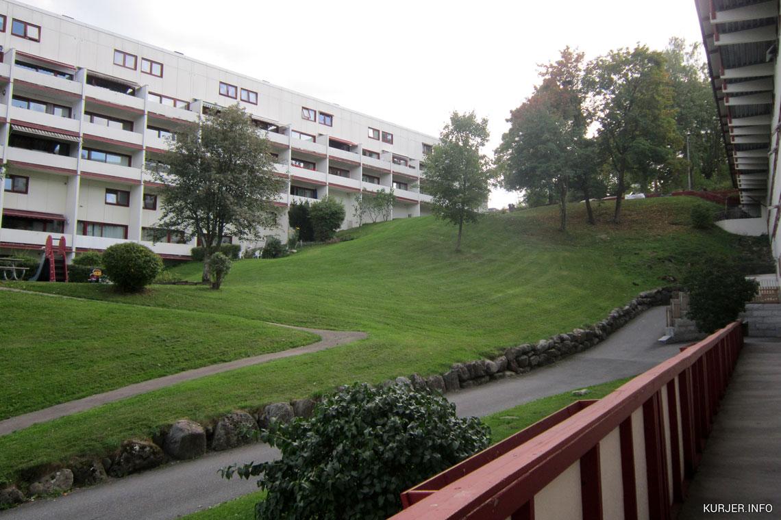 Иммиграция в норвегию из беларуси