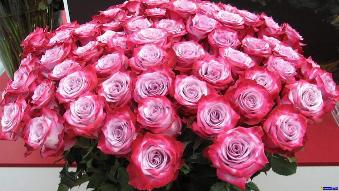 Цветы своими, картинки с днем рождения много цветов
