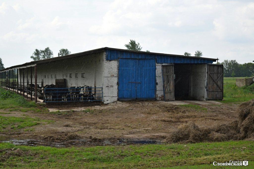 Ферма в деревне Вороничи