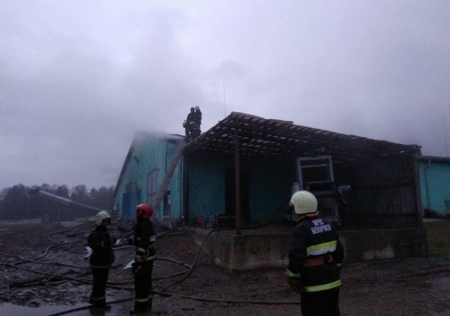 пожар 8