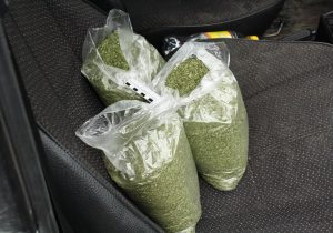Житель Кобрина перевозил марихуану в автомобиле