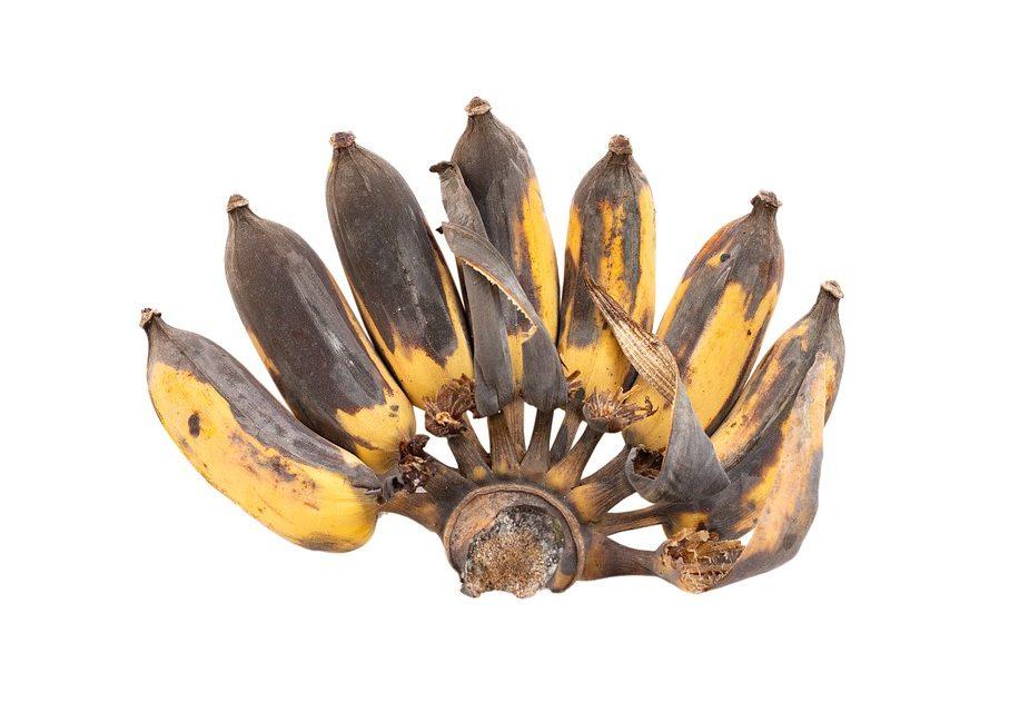 гнилые бананы