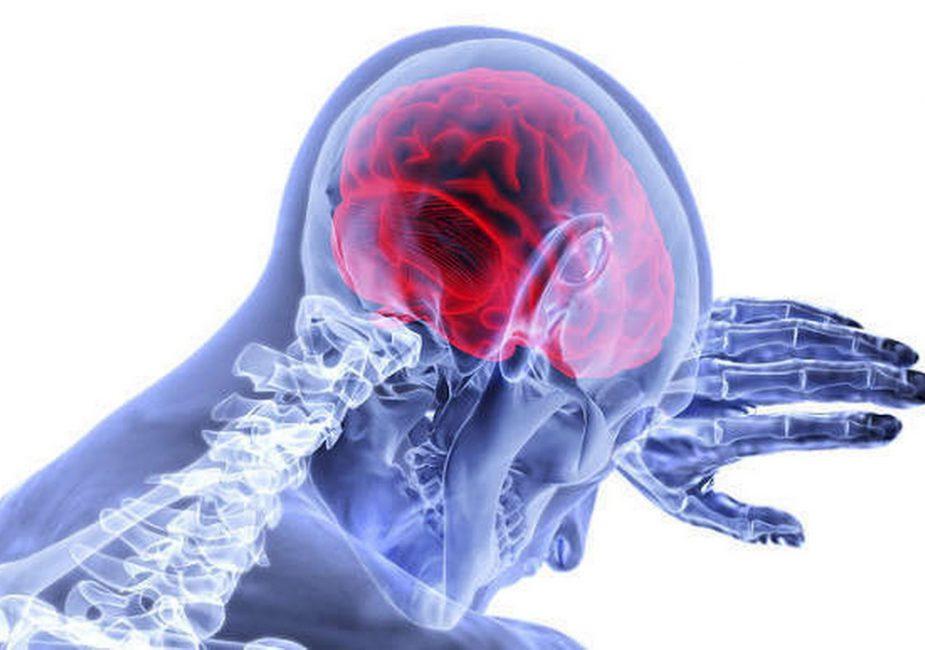 Коронавирус несет прямую опасность для мозга, заявили ученые