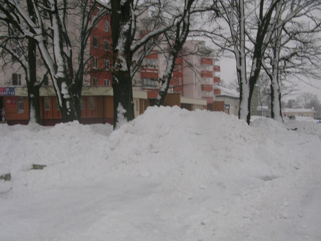 Бел-чырвона-белыя дамы сярод снегу