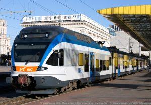 Лось угодил под поезд «Брест-Минск»