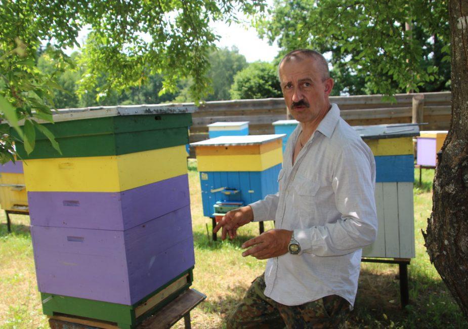 Пчеловод Геннадий Еда: «Пчелы – это моя заветная мечта»