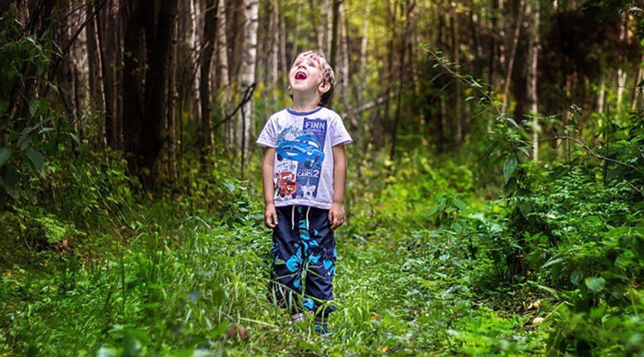 В Беларуси в лесу потерялся ребенок