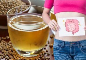 Ячменный чай полезен для здоровья кишечника и от тромбов